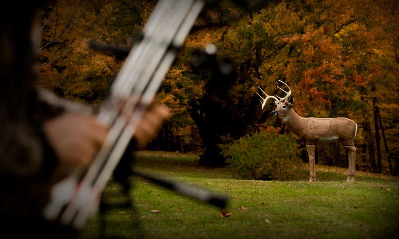 Delta McKenzie Archery Targets - Bloodline Buck