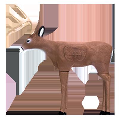 Intruder Deer 3D Archery Target