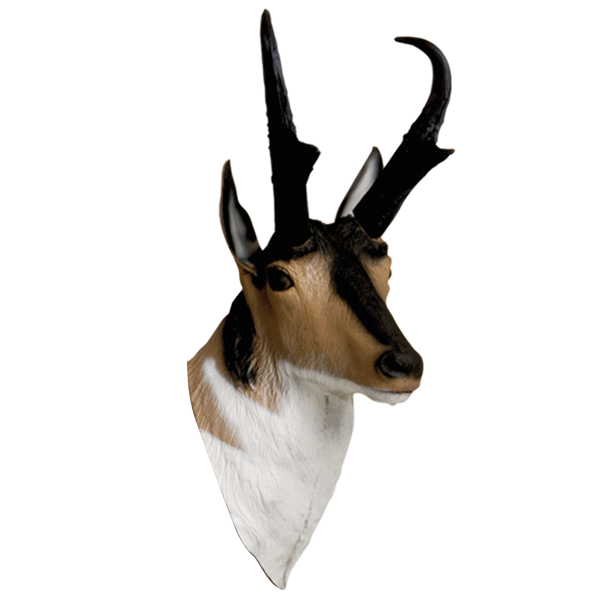 Delta McKenzie - Antelope 3D Archery Target Replacement Head