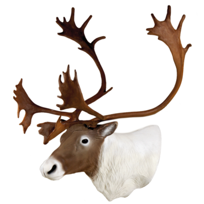 Caribou 3D Archery Target Head
