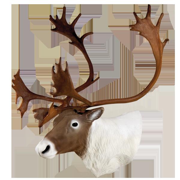 Delta McKenzie - Caribou Archery Target Replacement Head