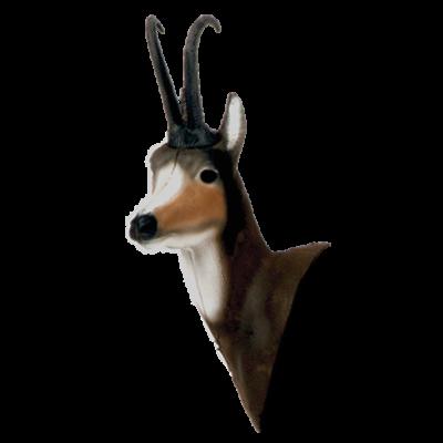 Chamois 3D Archery Target Head