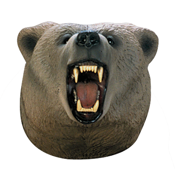 Grizzly Bear Archery Target Replacement Head