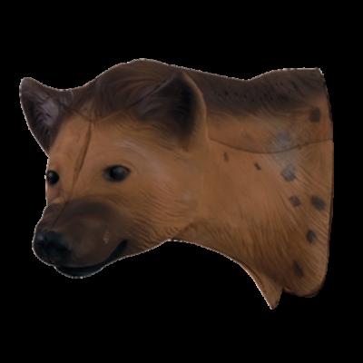 African Hyena Head