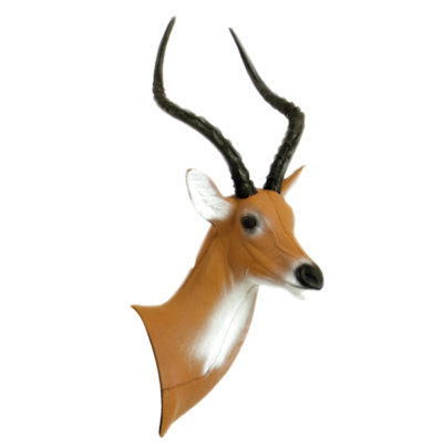 African Impala 3D Archery Target Head Replacement
