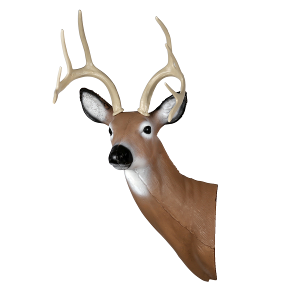 Large Alert Deer Head