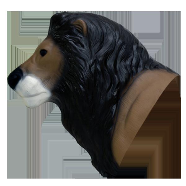African Lion Head