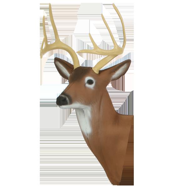 Medium Deer Head
