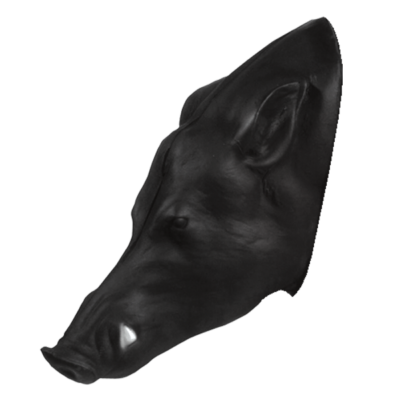 Wild Boar 3D Replacement Head Pro Series