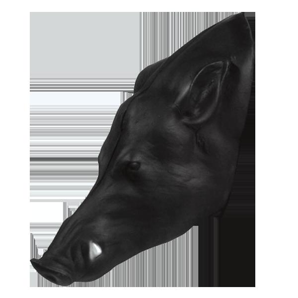 Pro 3D Wild Boar Head