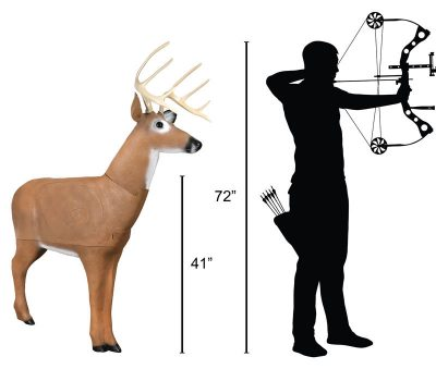 Big Daddy Buck 3D Archery Target