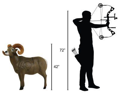 Bighorn Sheep 3D Archery Target