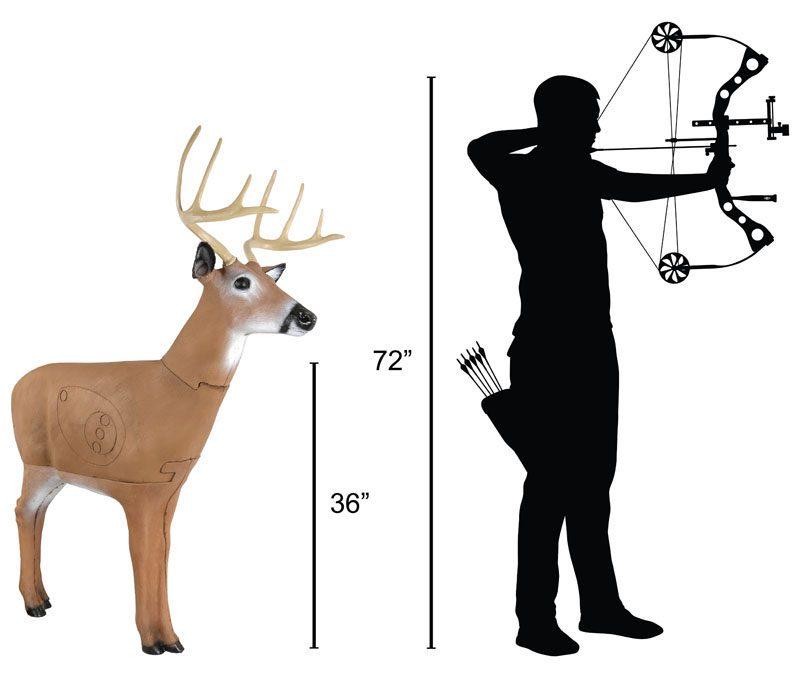 Delta McKenzie - Hoosier Daddy Buck 3D Archery Target