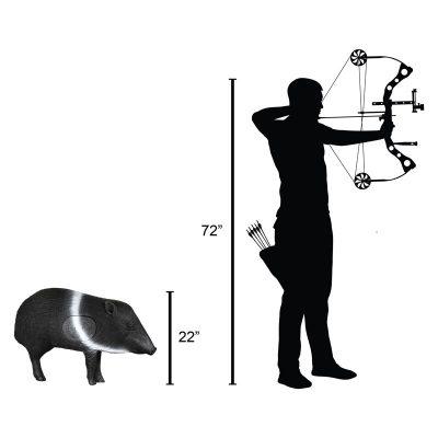 Javelina 3D Archery Target