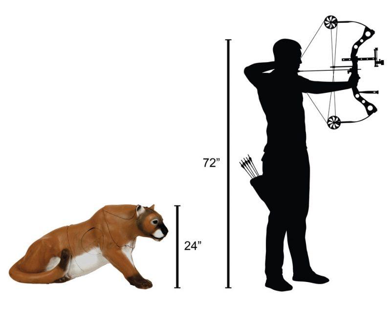 Delta McKenzie - Mountain Lion 3D Archery Target