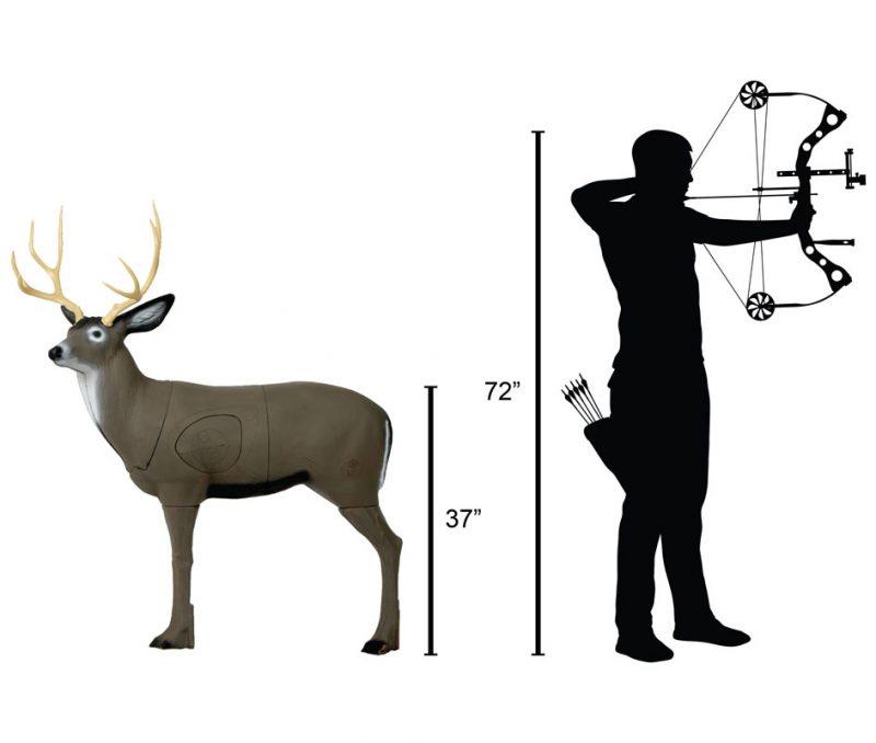 Delta McKenzie - Mule Deer 3D Archery Target