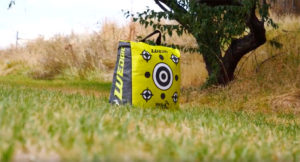 Wedgie™ Bag Target – Now Available in a Portable 20″ Model