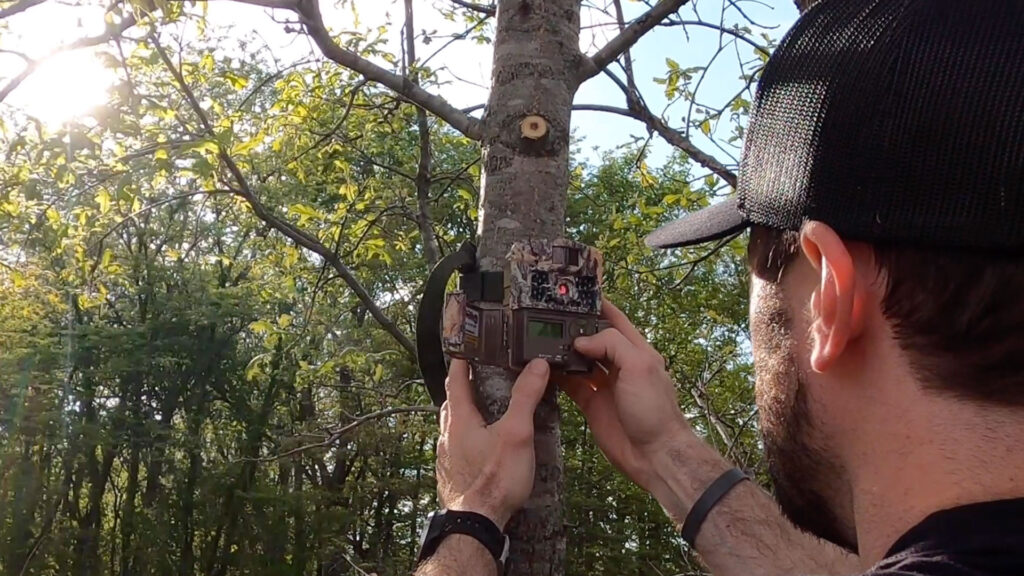 How to place trail cameras